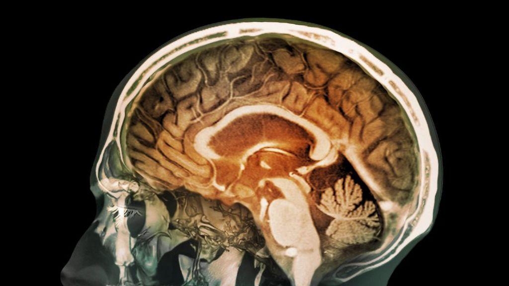 percezione del corpo